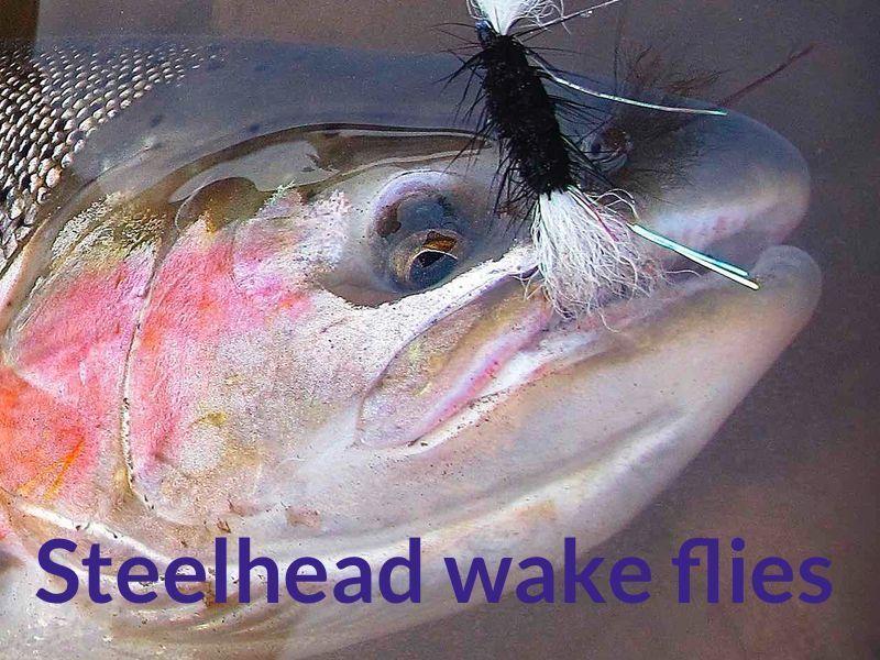 steelhead wake fly