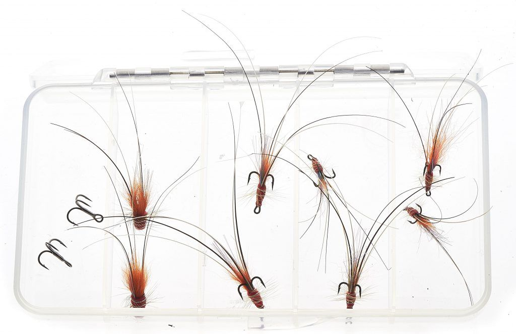 Collection of Micro Frances flies