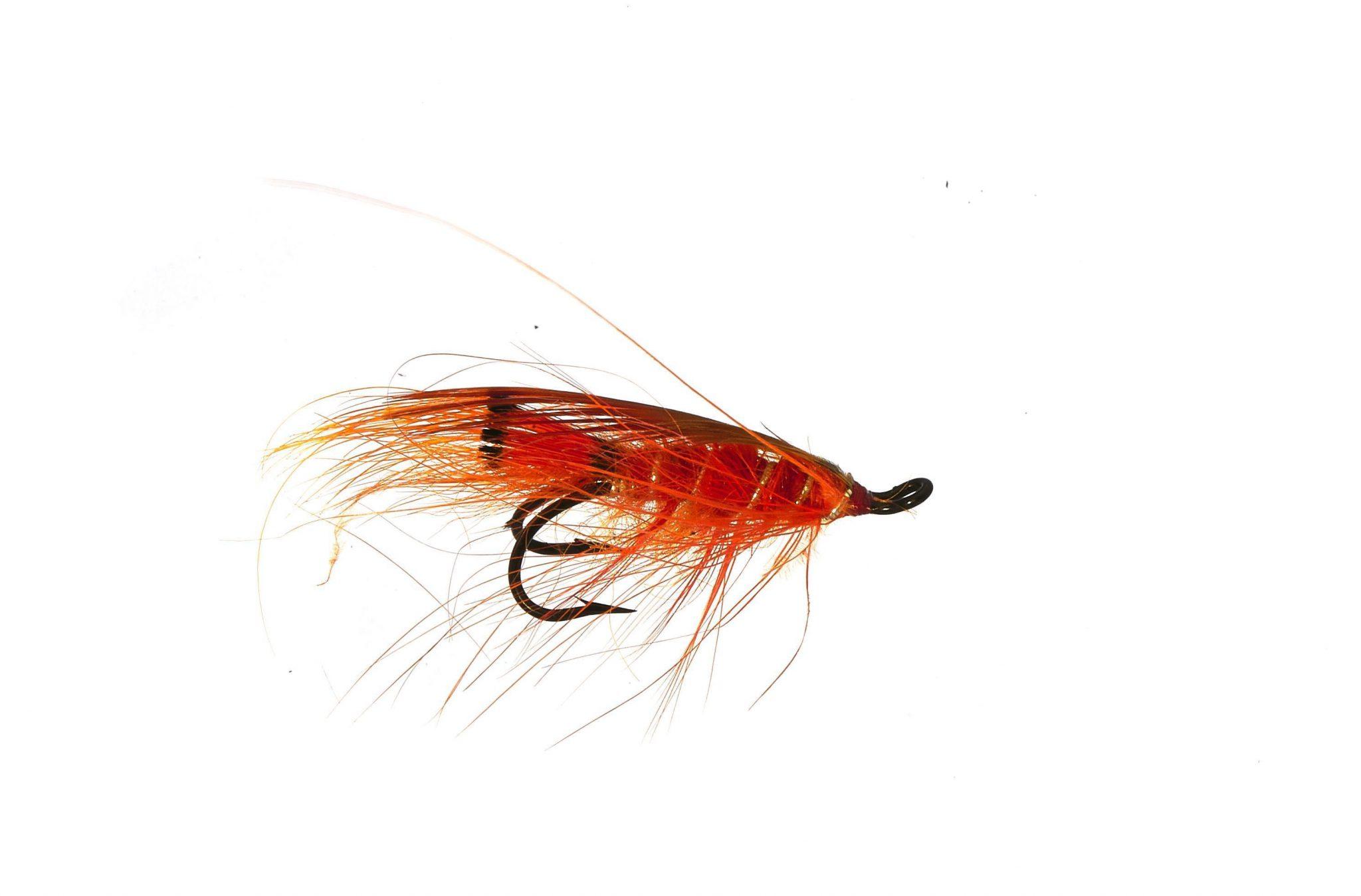 General Practitioner shrimp fly