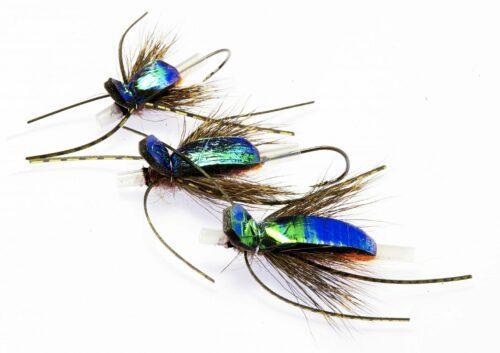 Flashback Bug