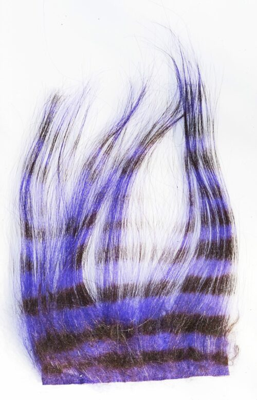 Zebra Goat Black & Purple