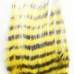 Zebra Goat Black & Yellow
