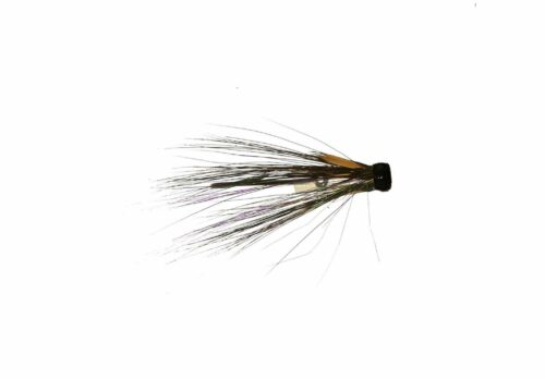 V-Fly Russian Black Squirrel1