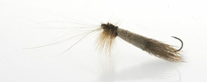 salmon dry fly