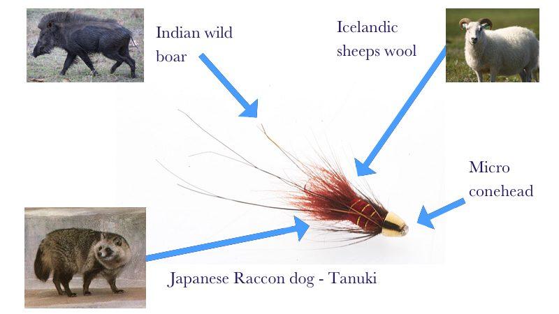 Frances Micro conehead tube fly